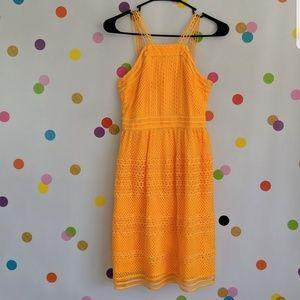 NWT Tahari ASL Honey dress 0